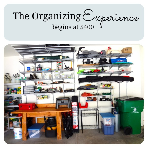 Organizing Experience