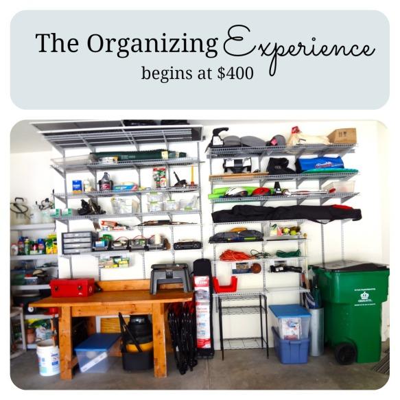 Organizing Experience