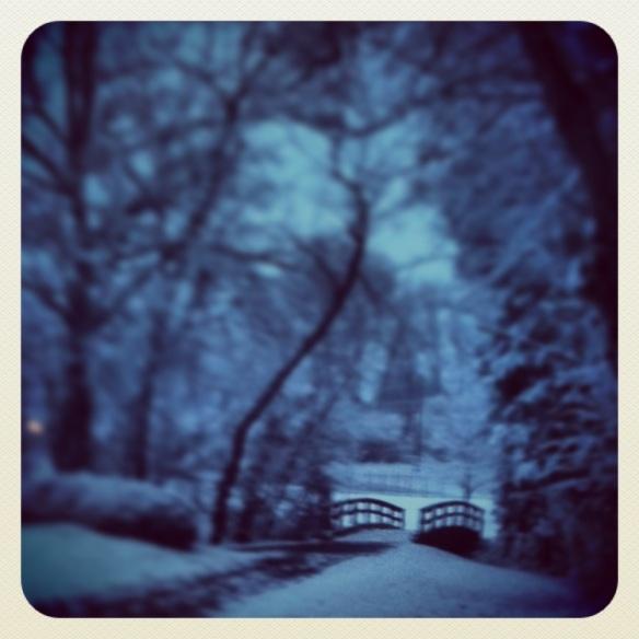 Winter Wonderland 2013.